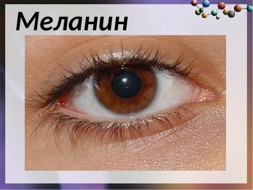 действие меланина на цвет глаз
