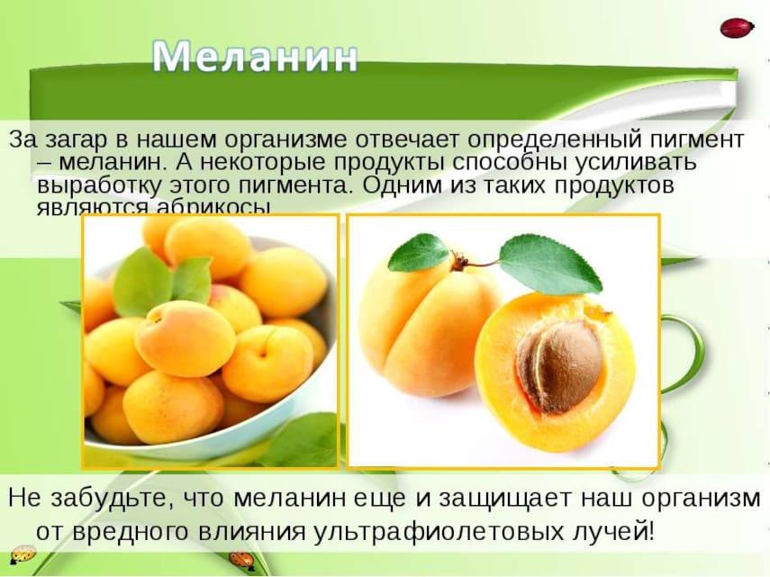 абрикос - продукт, богатый меланином